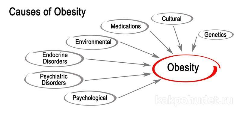 причины возникновения ожирения