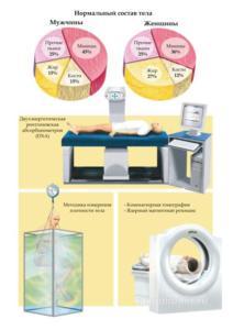 Нормальный состав тела