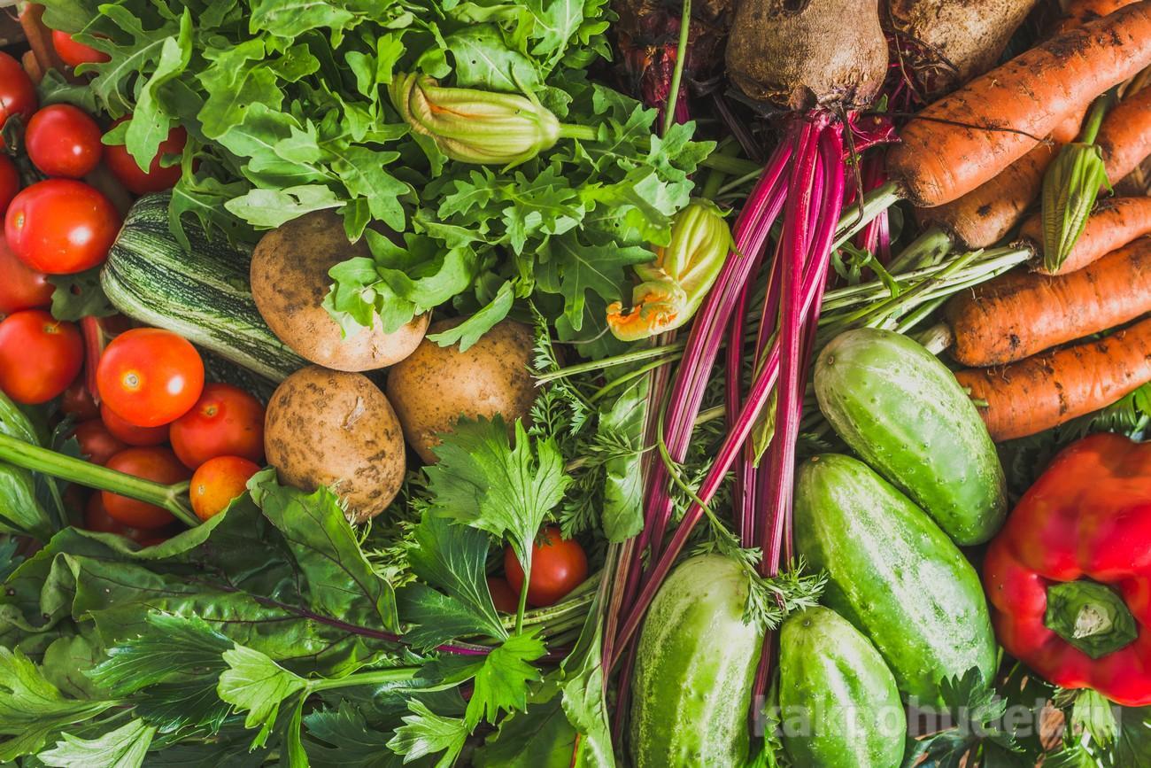 овощи и метаболизм