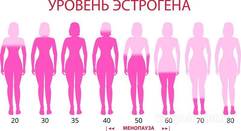 Уровень эстрогена во время менопаузы