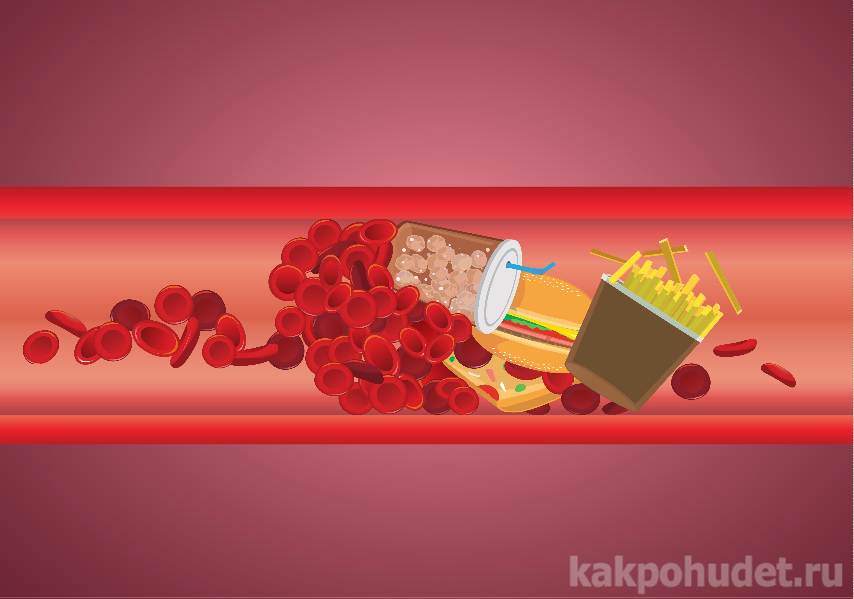 миф холестерин