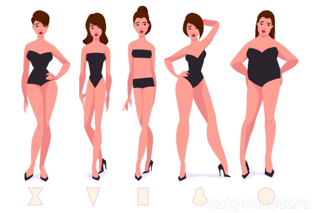 мифы генетика вес