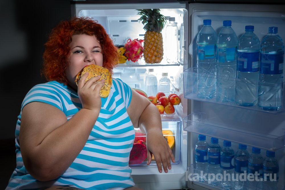 Механизм развития проблемы пищевой зависимости