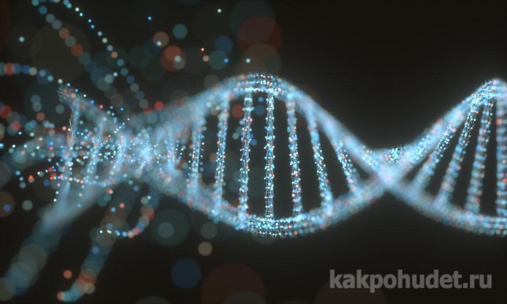 Целлюлит – это генетика, и с ним ничего не поделаешь