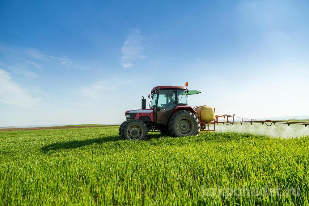 Вред химических пестицидов и удобрений