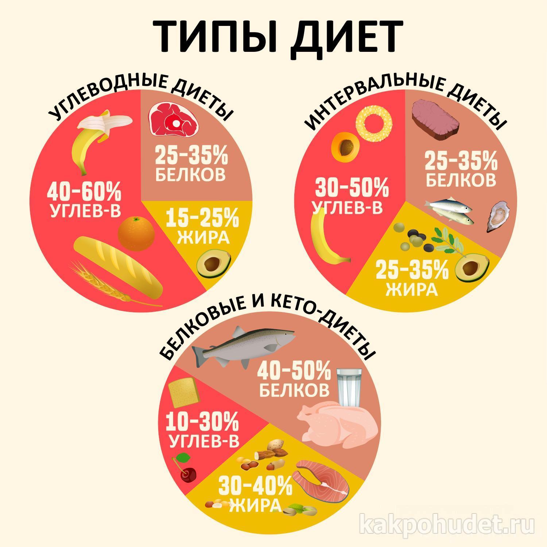 Типы диет инфографика