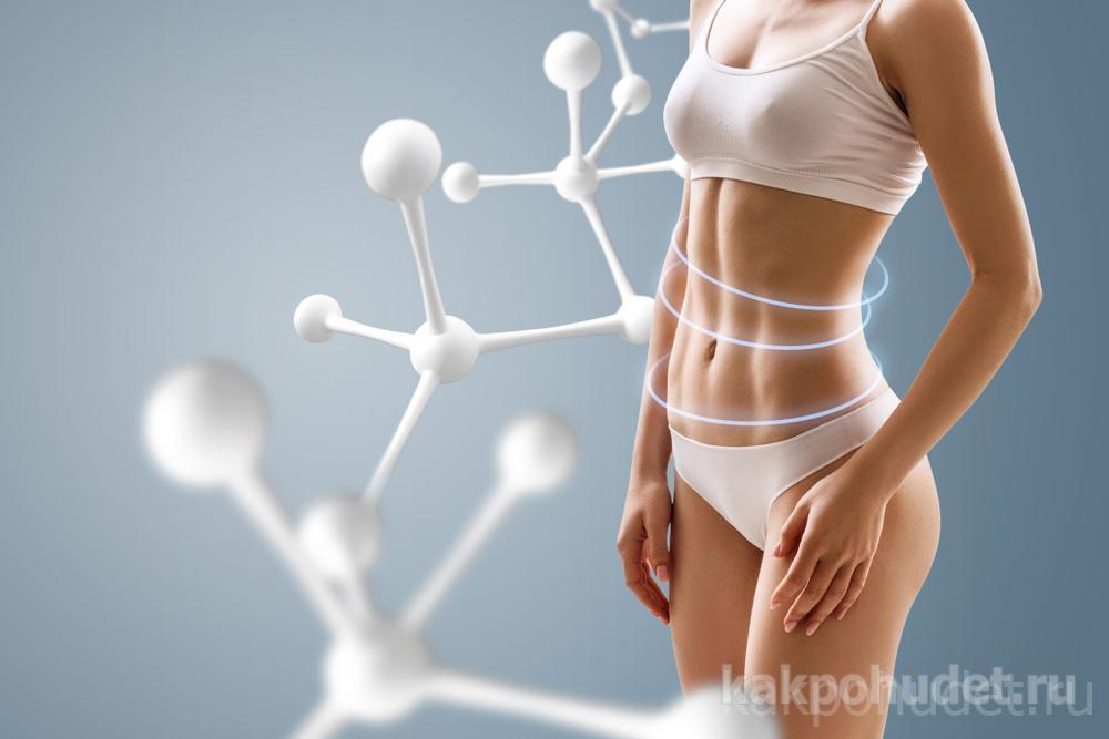 Средство для похудения био формула